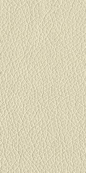 Eco-leather Silvia 02